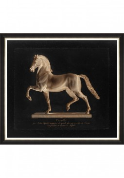 Cavalo by Dominico Marchetti Framed Art by Mind The Gap